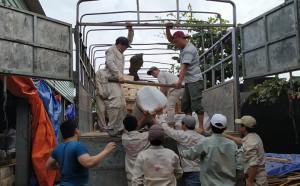 Hoàn tất việc chuẩn bị vật tư dự án Jjimjilbang Vũng Tàu