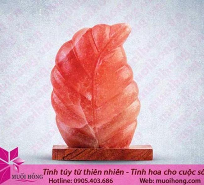Công dụng thật sự của đá muối Hymalaya – bạn đã biết chưa4
